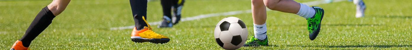 Southwest Florida Soccer Association | devoted to competitive local soccer